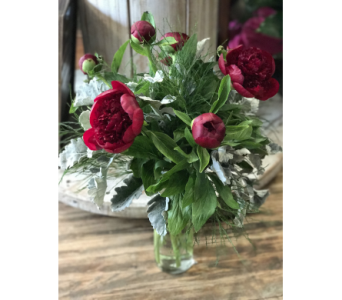 Blushing Peonies in Creedmoor NC, Gil-Man Florist Inc.