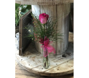 Single Rose in Creedmoor NC, Gil-Man Florist Inc.