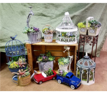 succulent gardens in Crown Point IN, Debbie's Designs
