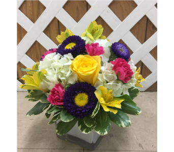 White Cube in Purcellville VA, Purcellville Florist