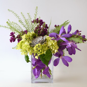 Blackberry Bramble in Dallas TX, Dr Delphinium Designs & Events