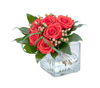 Modern Six in Plantation FL, Plantation Florist-Floral Promotions, Inc.