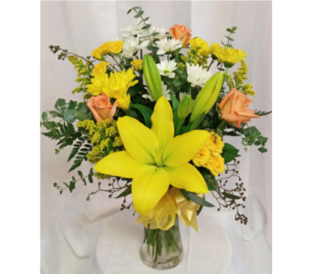 Daisies & Sunshine in Grand Rapids MN, Shaw Florists