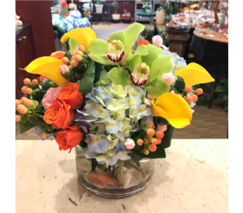 Malibu in Princeton, Plainsboro, & Trenton NJ, Monday Morning Flower and Balloon Co.