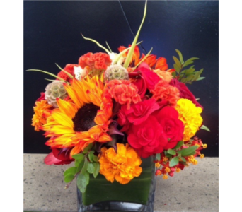 INDIAN SUMMER in Bellevue WA, CITY FLOWERS, INC.
