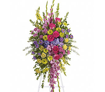 Bright & Beautiful Spray in Baltimore MD, Raimondi's Flowers & Fruit Baskets