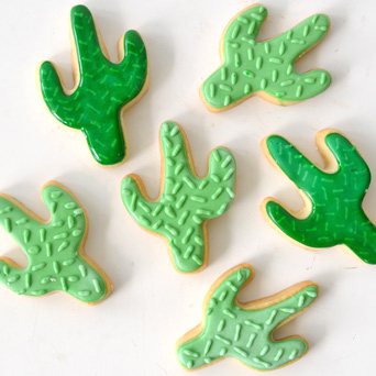 Cactus Cookies in Dallas TX, Dr Delphinium Designs & Events