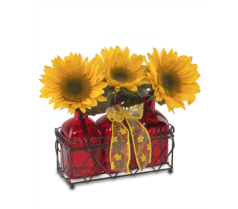 Summer Sunflower Trio in St. Louis MO, Walter Knoll Florist