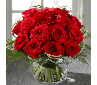 Roses are Red in Baltimore MD, Raimondi's Flowers & Fruit Baskets