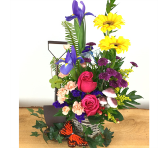 Country Blooms in Baltimore MD, Raimondi's Flowers & Fruit Baskets