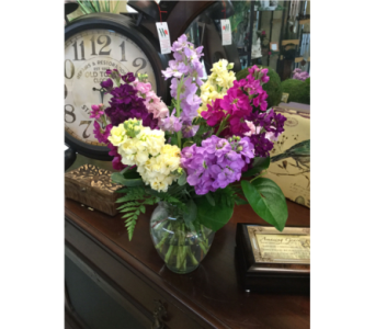 Summers of Sweet Stock Flowers  in Owensboro KY, Welborn's Floral Company