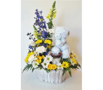 New Baby Gift Basket in Nashville TN, Flowers By Louis Hody
