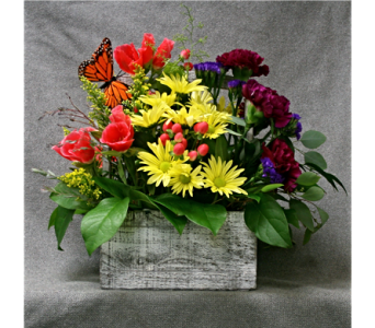 Summer Box  in Port Huron MI, Ullenbruch's Flowers & Gifts