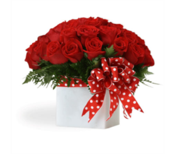 Red Polka Dots in San Antonio TX, Blooming Creations Florist