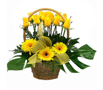 All in Yellow in San Antonio TX, Blooming Creations Florist