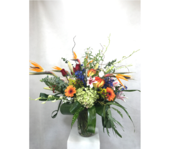House seasonal arrangement in Naperville IL, Naperville Florist