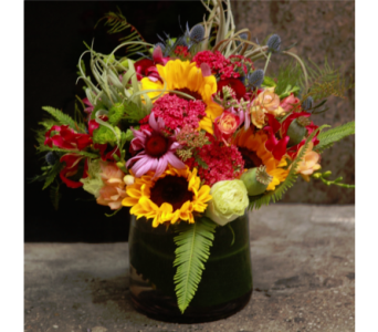 Manhattan Colors in New York NY, Starbright Floral Design