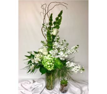 Pure And Fresh in Clearwater FL, Hassell Florist