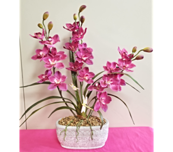 Red Orchid in Lehigh Acres FL, Bright Petals Florist, Inc.