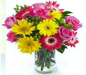 Gerbera Rose Arrangement in Nashville TN, Emma's Flowers & Gifts, Inc.
