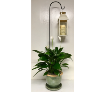 Peace Lily with Lantern & Memorial Candle in Wyoming MI, Wyoming Stuyvesant Floral