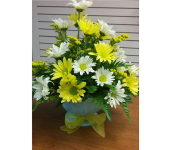 CRAZY DAISY BOUQUET in St. Joseph MO, Butchart Flowers Inc & Greenhouse