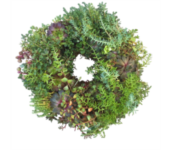 Succulent Wreath $15 OFF in Eugene OR, Dandelions Flowers