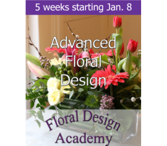 Advanced Floral Design 1/8 in Norristown PA, Plaza Flowers