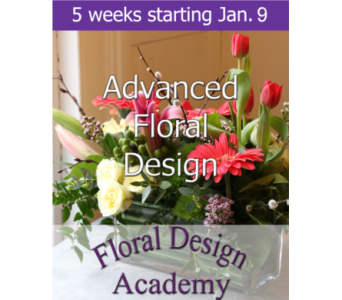 Advanced Floral Design 1/9 in Norristown PA, Plaza Flowers