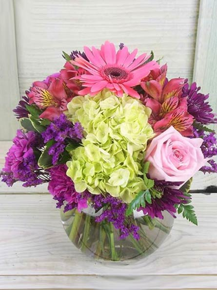 RUSH DELIVERY: Happiness in Arlington Heights IL, Sylvia's - Amlings Flowers