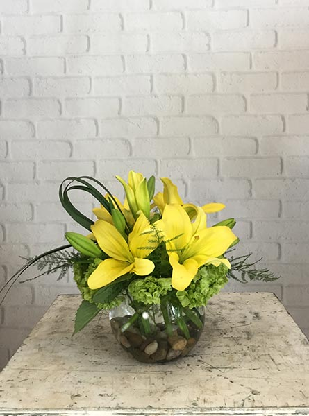 May: Lily in Arlington Heights IL, Sylvia's - Amlings Flowers