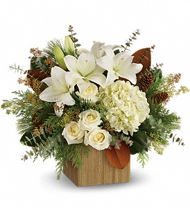 Teleflora's Snowy Woods Bouquet in Dubuque IA, New White Florist
