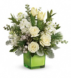 Teleflora's Winter Pop Bouquet in Washington, D.C. DC, Caruso Florist