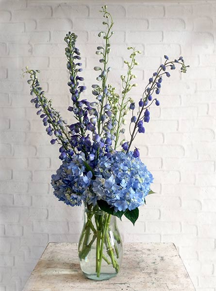 July: Delphinium in Chicagoland IL, Amling's Flowerland