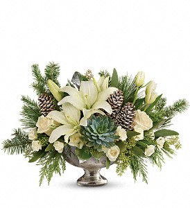 Teleflora's Winter Wilds Centerpiece in Dubuque IA, New White Florist