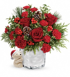 Send a Hug Winter Cuddles by Teleflora in Dubuque IA, New White Florist
