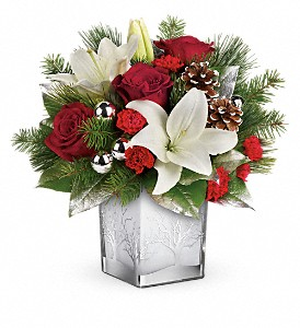 Teleflora's Frosted Forest Bouquet in Jamesburg NJ, Sweet William & Thyme