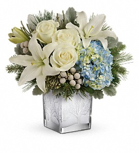 Teleflora's Silver Snow Bouquet in Edmonton AB, Petals For Less Ltd.