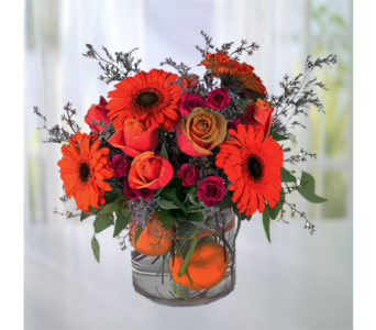 Orange Crush in Indianapolis IN, George Thomas Florist