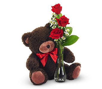Bear Love in Campbell CA, Citti's Florists