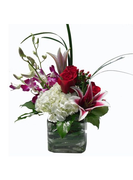 RUSH DELIVERY: Paris in Raleigh NC, Fallon's Flowers