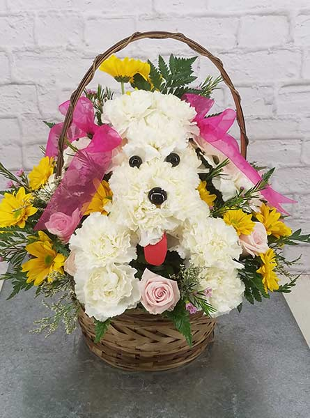 Fido Bouquet in Arlington Heights IL, Sylvia's - Amlings Flowers