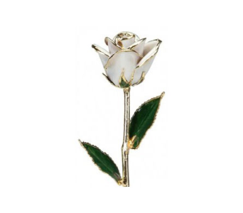 White Gold Rose in 24 kt in Aston PA, Minutella's Florist