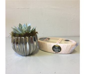 Silver Succulent   Candle in Walla Walla WA, Holly's Flower Boutique