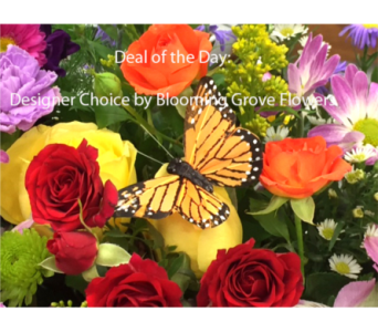 Deal of the Day in Buffalo Grove IL, Blooming Grove Flowers & Gifts