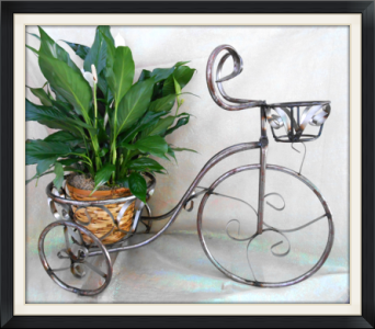 Medium Wrought Iron Trike in Tyler TX, The Flower Box