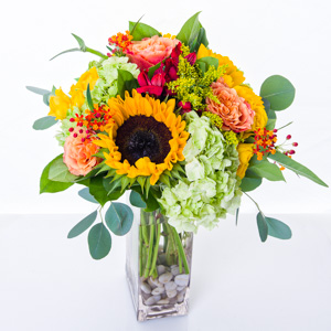 Harvest Sun in New York NY, Starbright Floral Design