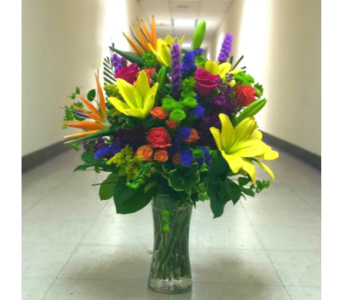 A TOUCH OF TROPICAL ARRANGEMENT in Arlington VA, Twin Towers Florist