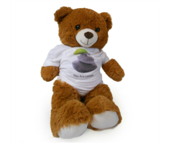 Bear with T-Shirt in Nashville TN, Emma's Flowers & Gifts, Inc.