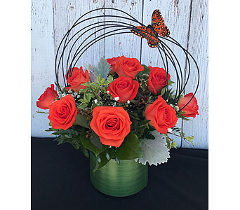 Contemporary Dozen in Tempe AZ, Bobbie's Flowers